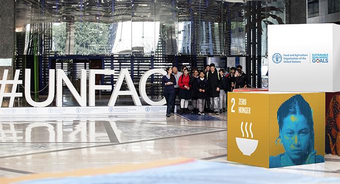 ?2018-й - Международный год зернобобовых по решению Асамблеи ООН