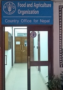 Our office | FAO in Nepal | Food and Agriculture Organization of the