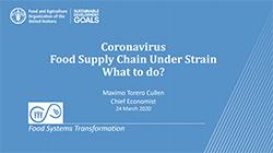 PPT: Coronavirus food supply chain under strain. What to do?