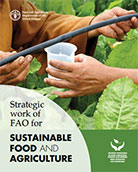 Strategic work of FAO for SUSTAINABLE FOOD AND AGRICULTURE