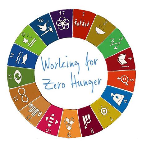 united nations diet plan