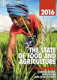 Fao e book collection fao food and agriculture organization of sofa 2016 fandeluxe Images