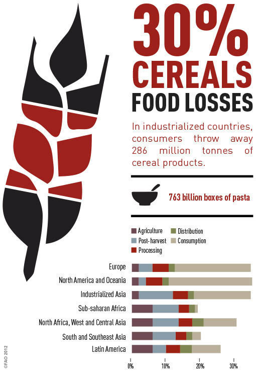 Cereals Info Graphic