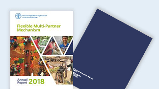 FMM Annual Report 2018