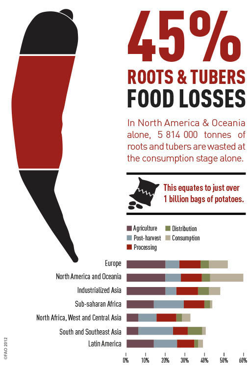Roots info graphic