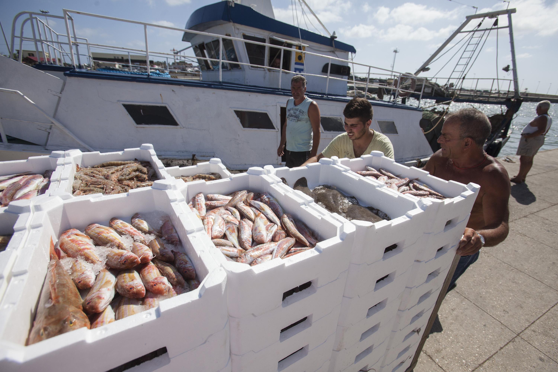 Les canots pneumatiques pour la pêche lancre